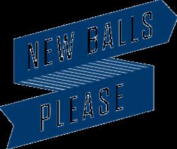 NBP logo blue